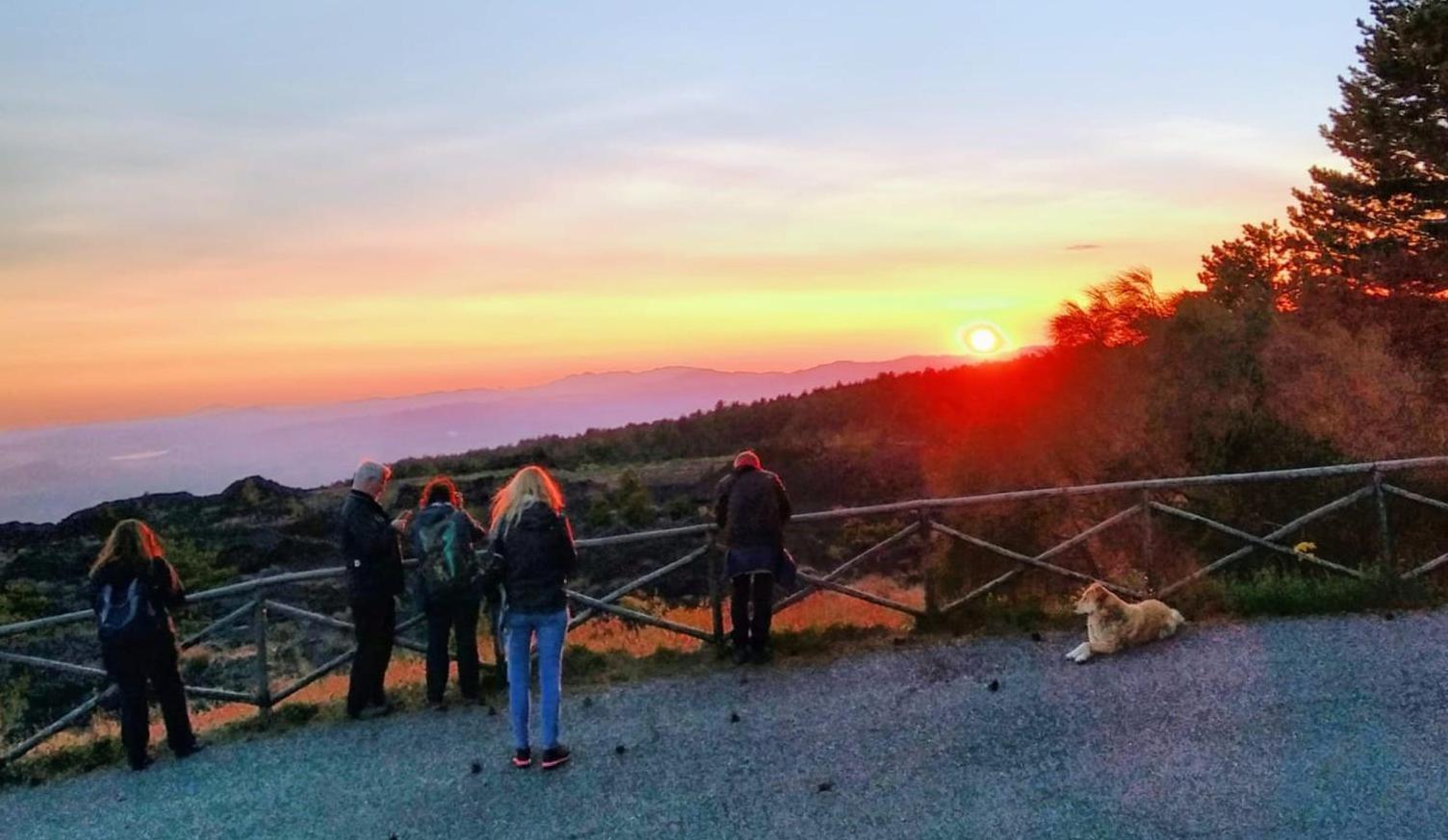 morning-sunset-1584475715.jpg